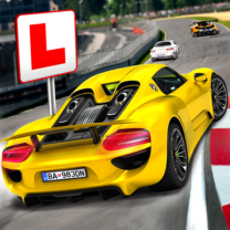 Race Driving License Test 2.1.2